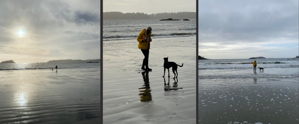 Mackenzie Beach in Tofino is ideal for dogs and families